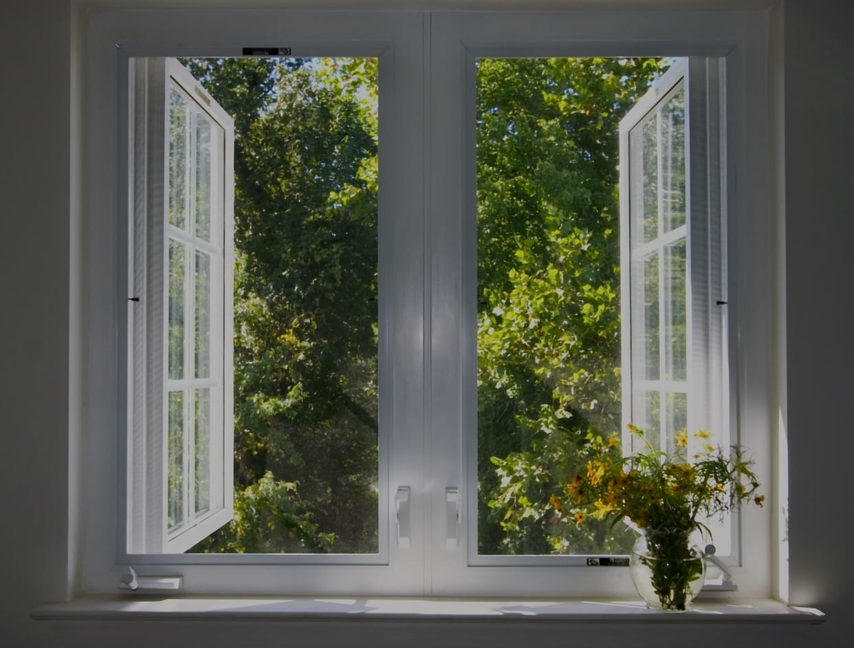 Interior Windows Open